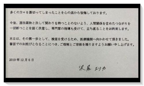 沢尻エリカ コメント