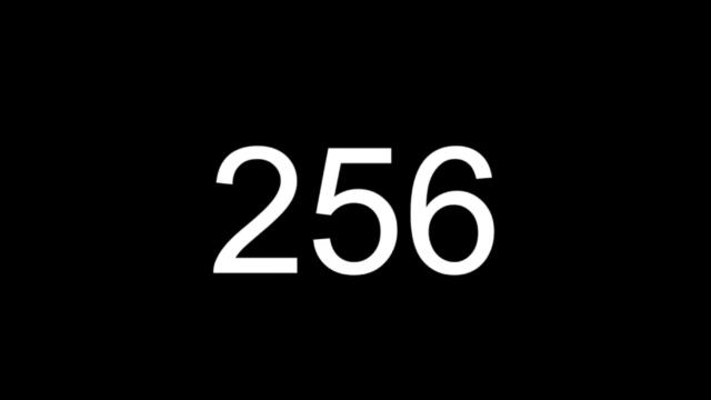 嵐 256